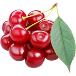 Cherry seed oil